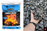 Welsh Anthracite Small Nuts