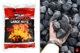 Welsh Dry Steam Large Nuts