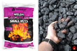 Welsh Dry Steam Small Nuts
